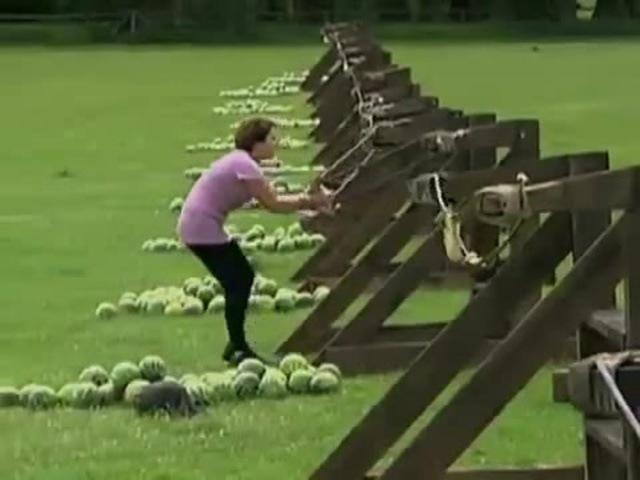 Watermelon headshot
