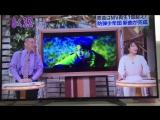 [한글자막] 170502 아사데스, 방탄소년단 피 땀 눈물 일본어버전 MV 일부 공개