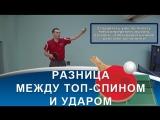 УДАР и ТОП-СПИН в НАСТОЛЬНОМ ТЕННИСЕ (Разница в технике удара и топ-спина в настольном теннисе)