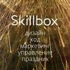 SkillBox - Навыки и практика