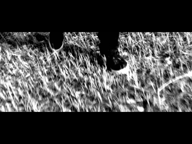 DJ Baryonyx - Reborn (Ft.Shaun) (Official Video) HD