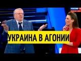 Гений политики! Жириновский предсказал убийство Вороненкова (видео) и озвучил н ...