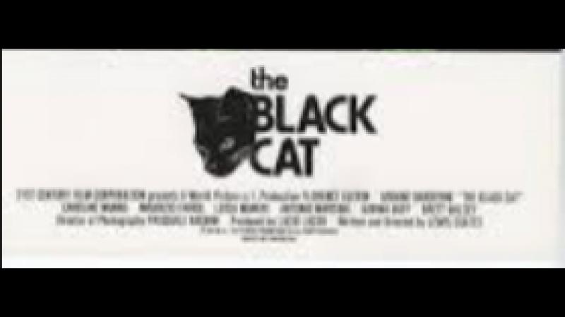 Демоны 6: Черный кот из ада / Demons 6: The Black Cat (1989)