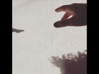 игра света и тени