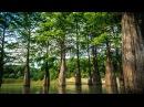 Кипарисовое озеро Сукко, Большой Утриш