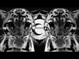 Mazlum Uruc - Nil ( Best Arabic Trap Music Mix 2017 )