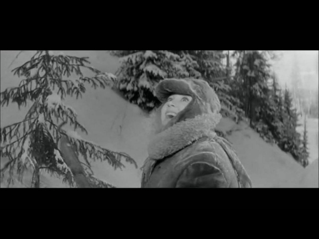 Старый клён - Фильм Девчата