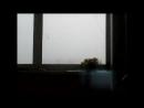 Лютый осел шел встречать восход солнца, а получил Сайлент Хилл