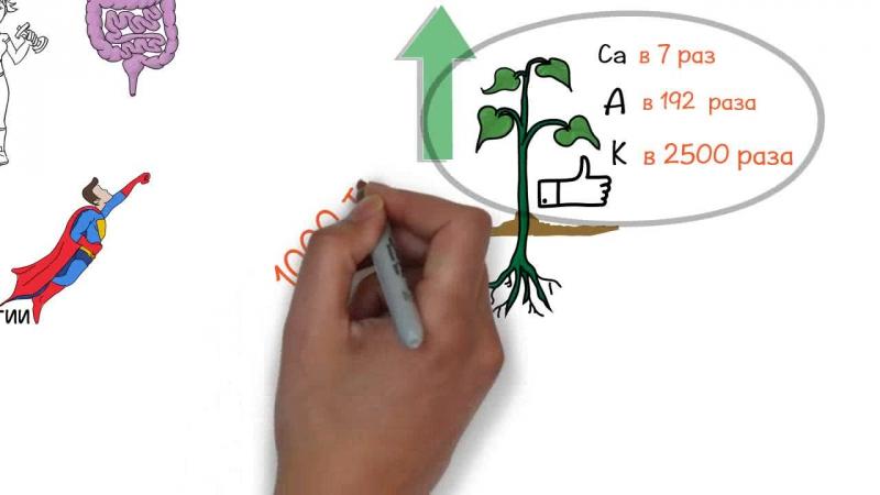 Зелень для жизни. Виктория Бутенко - Анимированный обзор книги - Зеленый коктейль.wmv