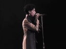 Life O The Party - On the Road with Prince and the NPG