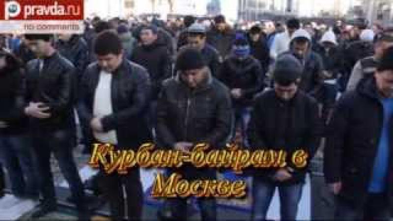 Ставленники Путина в Крыму воры и национал предатели