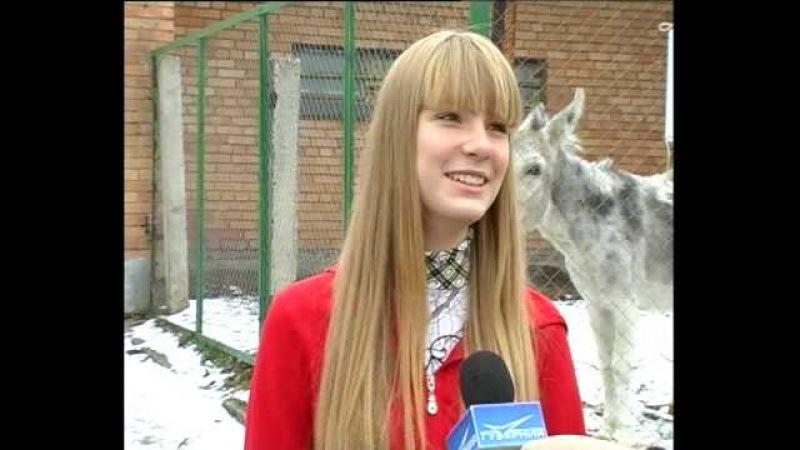Осел напердел при записи интервью Donkey fart