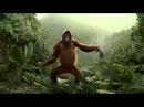 Танцующая обезьяна. Всем хорошего дня!