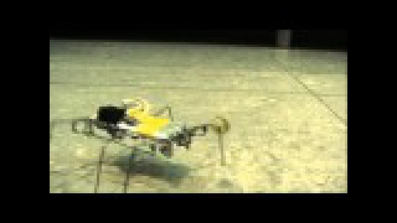 Робот таракан из скрепок Жёлтый По