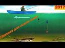 Наживка для ловли сома, на что ловить, 5 видов приманки