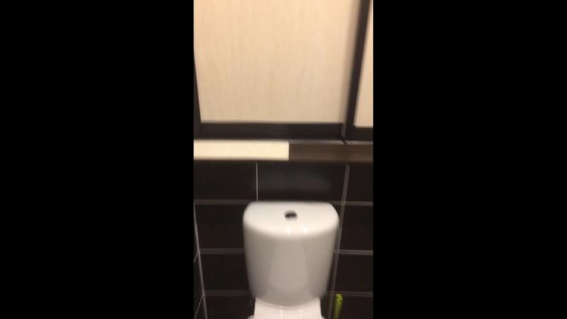 Когда туалет в квартире большой