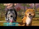 Альфа и Омега Большая анимация на ВТВ