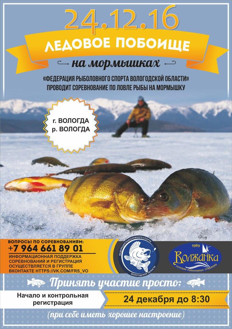 Кубок Вологодской области по ловле на мормышку со льда