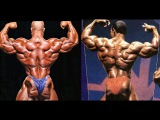 Phil Heath vs. Flex Wheeler @ Mr. Olympia - Photo Comparison