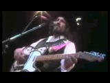 Waylon Jennings Waymore's Blues