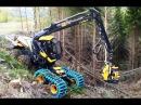 Американские лесорубы 80 го уровня и их машины для уничтожения леса
