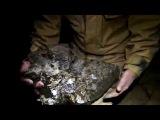 Greenlaws mine - a huge fluorite specimen drops on Pete's head!