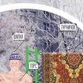 Инфографика от портала ProGorodSamara.ru: Как выглядит типичный любите