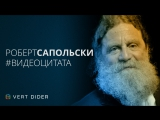 Роберт Сапольски об атеизме, свободе воли и вере в Бога [Vert Dider]