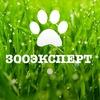 Интернет-зоомагазин zooekspert.ru