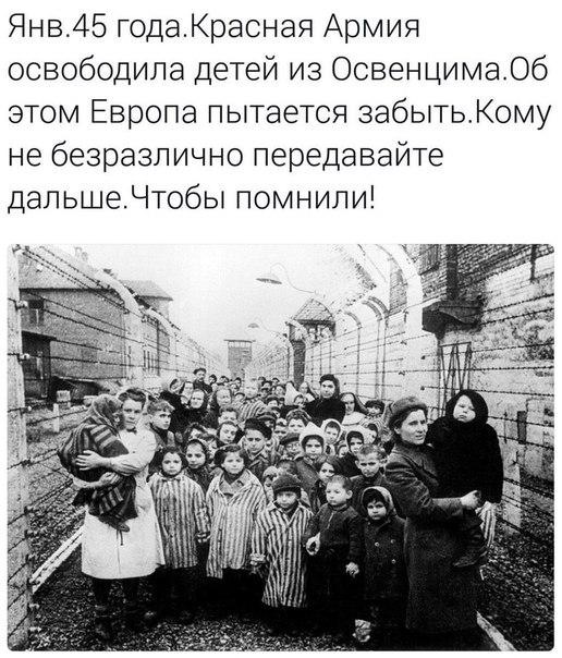 Освобождение детей из Освенсума
