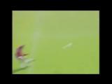 Ровно 20 лет назад Дэвид Бекхэм забил один из лучших голов в истории