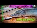 Щука на спиннинг 2 Бешеный клёв щуки Рыбалка в Бурятии Гусиное озеро Сезон 2017