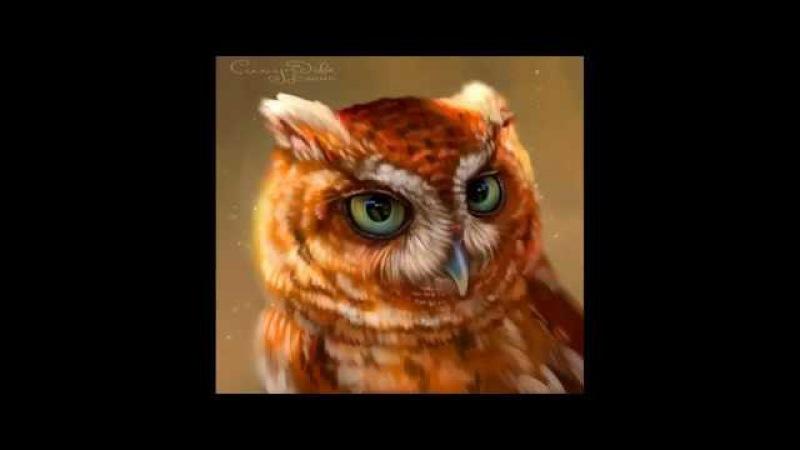 Speedpaint - owl (ES)