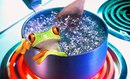Что будет, если бросить лягушку в кастрюлю с горячей водой? Она немедленно решит