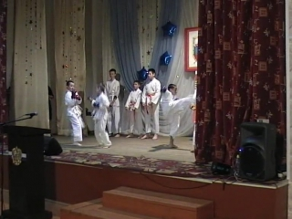 Показательные выступления по каратэ на День призывника 2016