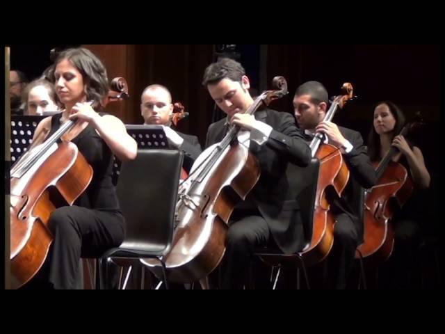 Martin Garrix - Animals Symphonic Edition ( Istanbul Uni. State Conservatory )