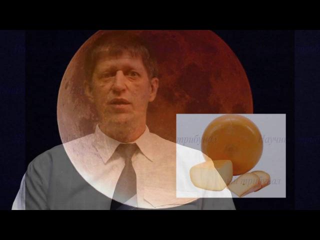 Апгрейд мозга 1 3 серии наука ★ ✔на Катющик ТВ