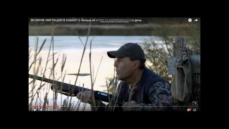 ВЕЛИКИЕ МИГРАЦИИ В КАМАРГЕ. Фильм об охоте на водоплавающую дичь.