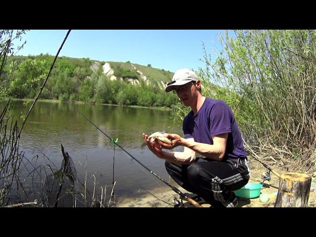 Крупный карась на фидер.Ловля рыбы на реке.Отличный клев.