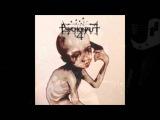 Psychonaut 4 - Personal Forest (S.D. Ramirez version) Bonus Track