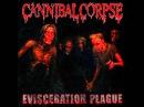 Cannibal Corpse Evidence In The Furnace Lyrics