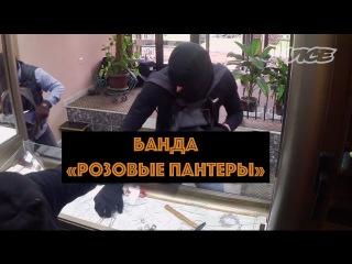Банда Розовые пантеры Грабители Европы | VICE |