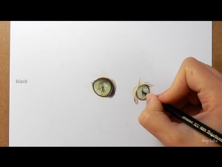 Step by Step - How to draw, color realistic cat eyes with colored pencils - Emmy Kalia