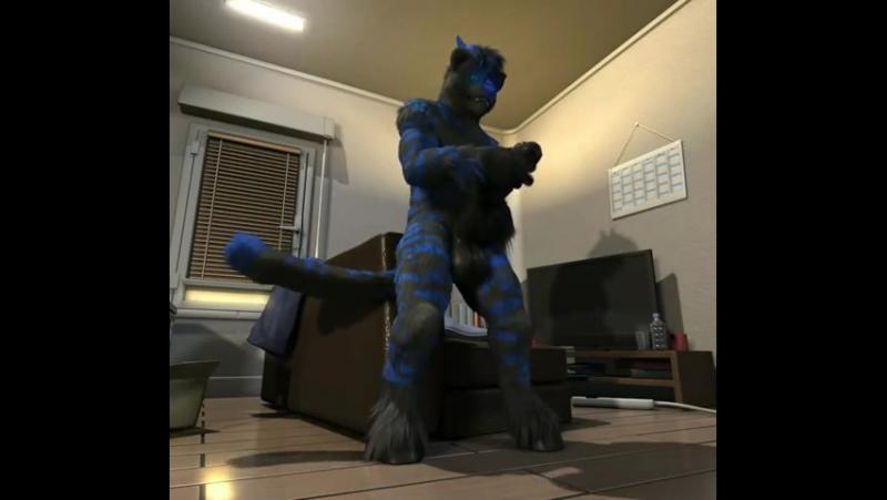 Cat Yiff 2 (h0rs3) » Freewka.com - Смотреть онлайн в хорощем качестве