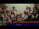 Ой у лузі Червона Калина.Виконують учасники вечорницьВареник для АТО.с.Гвізд.