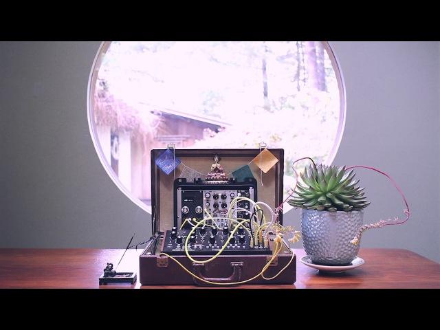 Rainy Day Modular 3 - Zvex Lo-Fi Junky, Temps Utile, Moog Mother 32