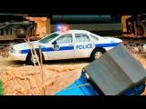 Die Polizeiautos und die Krankenwagen  Cartoon f