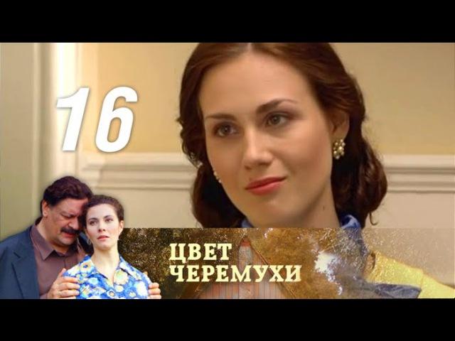 Цвет черемухи Серия 16 2012