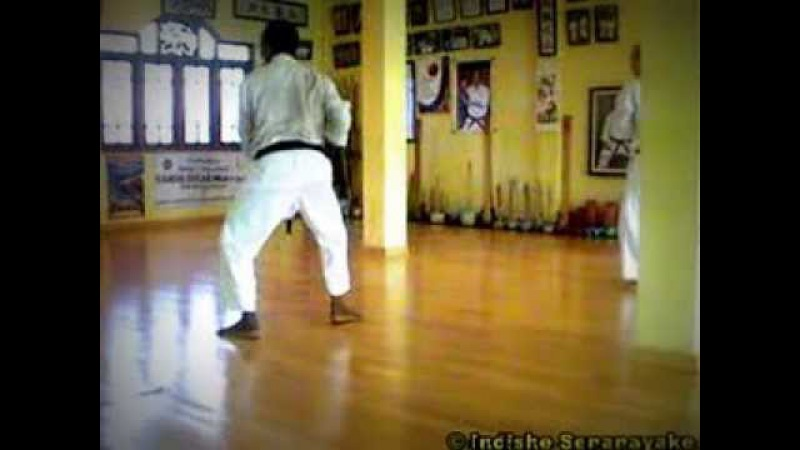Pinan Kata Series of Shorin Ryu Kyudokan Karate-do - Hanshi Oscar Higa