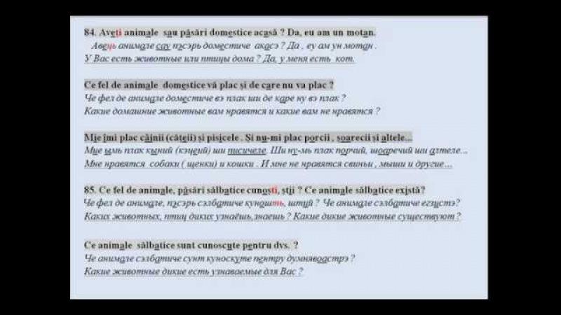 81 -90 вопросов про животных для румынской присяги